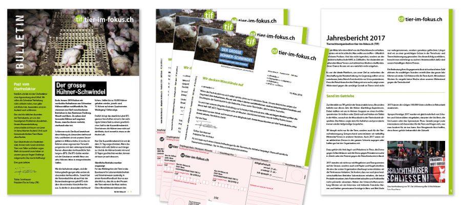 Jahresbericht, Bulletin und Spendenbrief | Gestaltet, gedruckt und raus mit der Post!